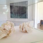 """Exposition personnelle 2014, Lyon """"Conversation d'un vestige contemporain"""""""