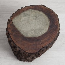 Pyrophyte II